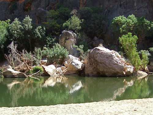 Walk The Walk Kimberley Wa Windjana Gorge