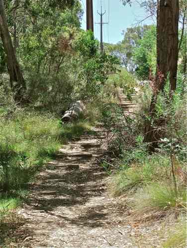 Adelaide Hills Walks Stirling Linear Park Woorabinda Lake